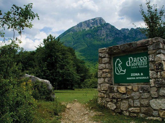 news-parco