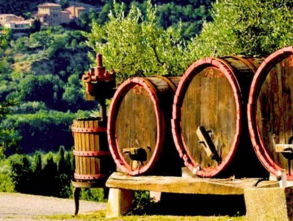 Cantina Abruzzo