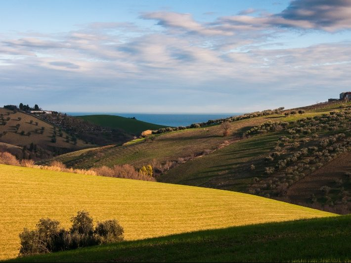 colline-abruzzesi-a9817f8a-013f-4cd1-b051-2d17dd73464c