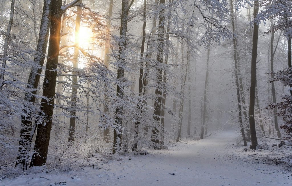 snow-4668099_1920